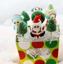 Christmas Cake Pops Stand Up Packaging