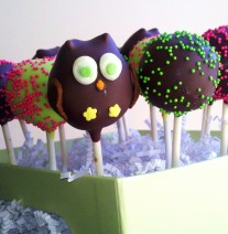 Owl Cake Pops Nashville