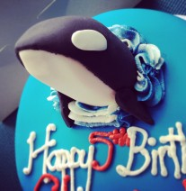 Orca Whale Birthday Cake
