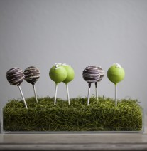 Cake Pops in Spanish Moss