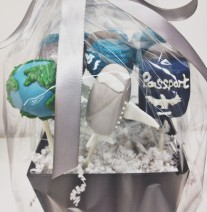 Travel Cake Pops