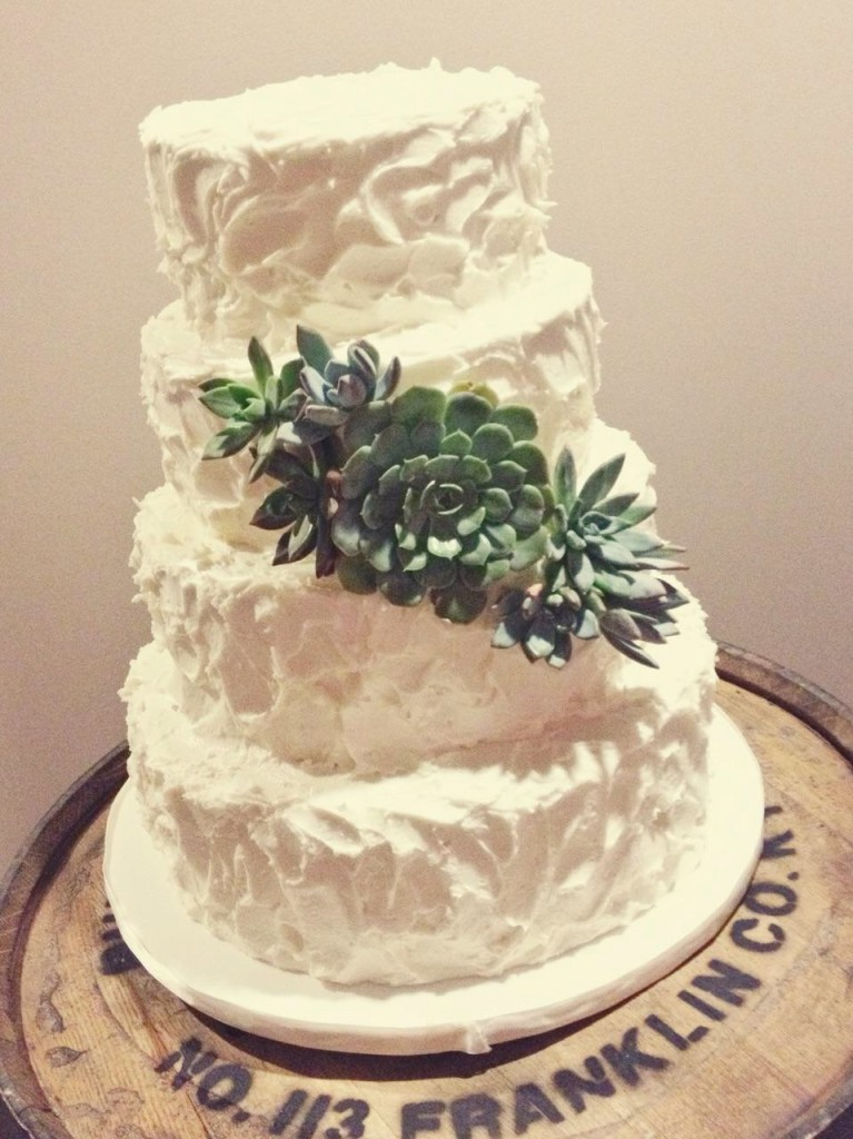 Stucco Buttercream and Succulents Wedding Cake